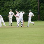 cork-county-players-appeal-successfully-for-the-wicket-of-ted-williamson