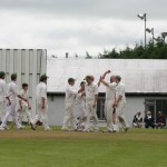 cork-county-players-celebrate-another-wicket-against-cork-harlequins