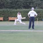 cricket-412