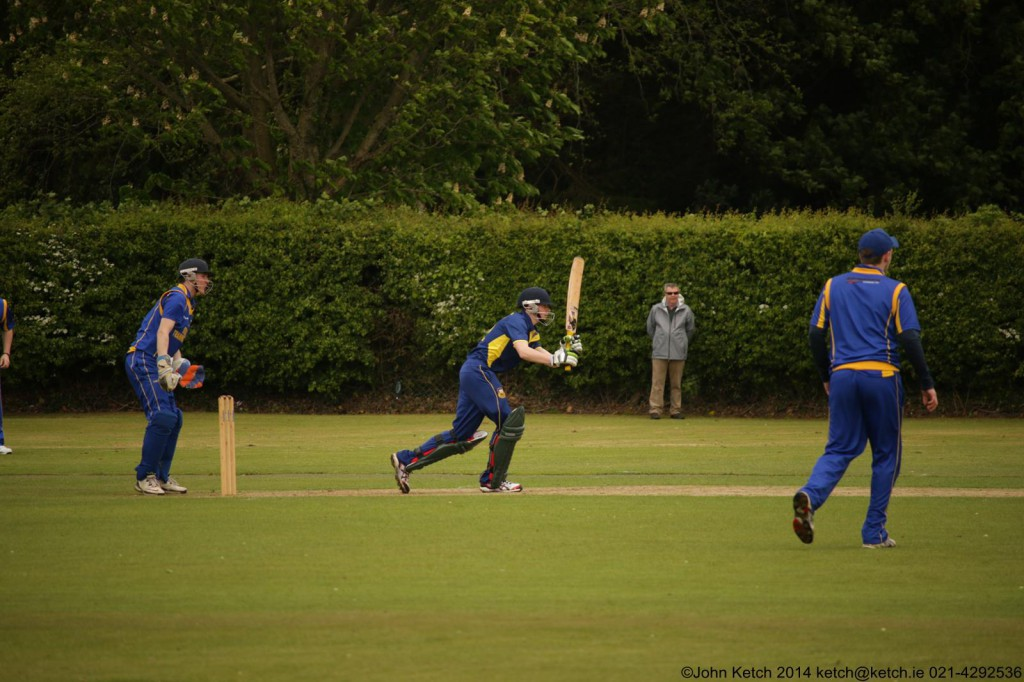 Cork County in Cork T20 action